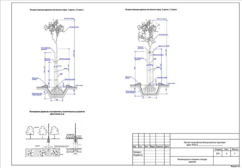посадка растений - инструкция